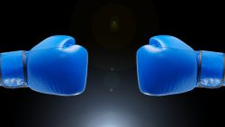 boxing-gloves-1709174_960_720